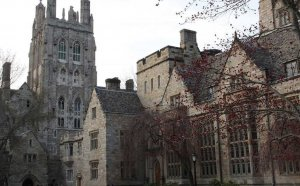 Yale Mental Health and Counseling